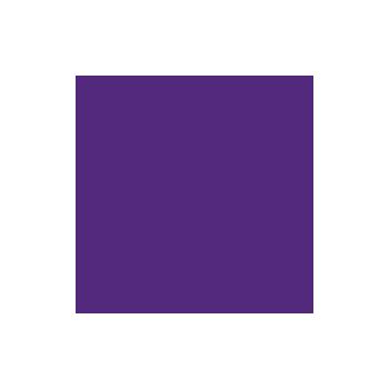 Icon: megaphone
