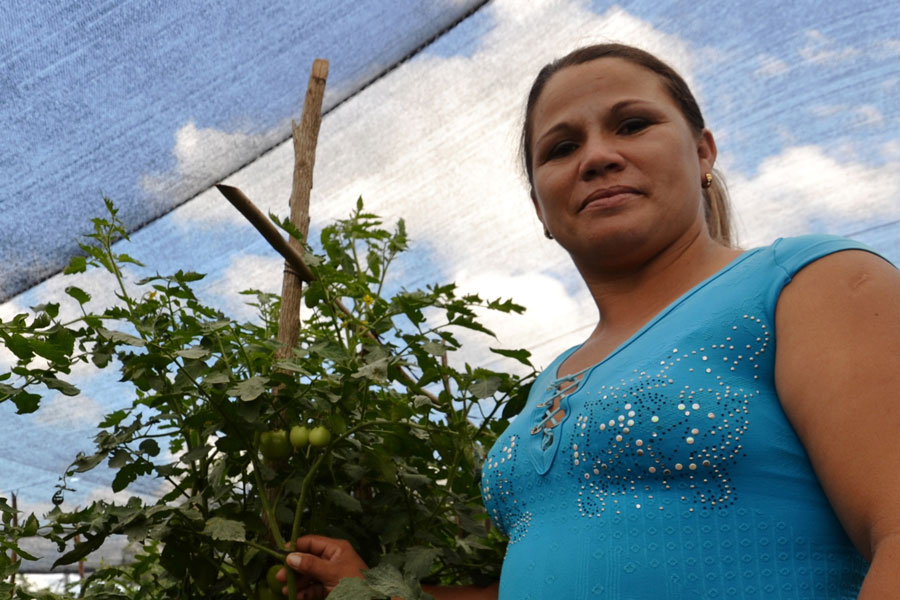 woman farmer using solar energy cuba