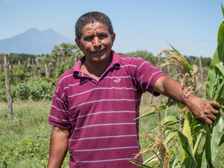 Felipe Córdoba, un agricultor de El Ranchón, muestra el maíz que está creciendo en esta zona de El Salvador afectada por la sequía gracias a nuestro programa para fortalecer la resiliencia.
