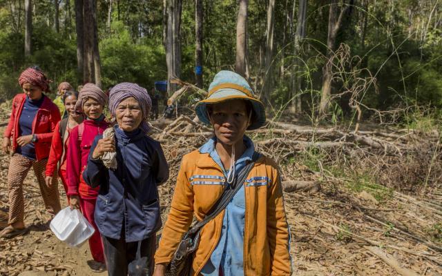 Au Cambodge, un groupe de femmes du village de Tang Malou se rend à pied dans la forêt. Photo : Savann Oeurm/Oxfam