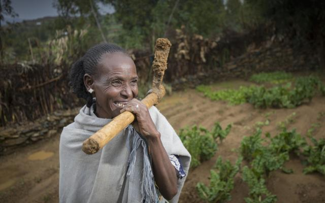 Hagosa Demowez, mère célibataire de trois enfants, participe à l'Initiative de résilience rurale R4, lancée par Oxfam en partenariat avec le Programme alimentaire mondial, dans le district de Barka Adisibha, en Éthiopie. Photo : Petterik Wiggers/Panos pour Oxfam