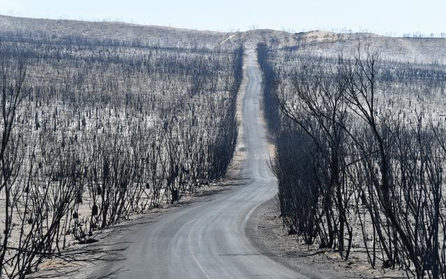 The start of 2020 found Australia in the midst of its worst-ever bushfire season.