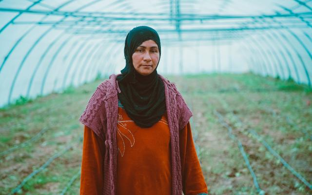 Woman in a greenhouse, Iraq.