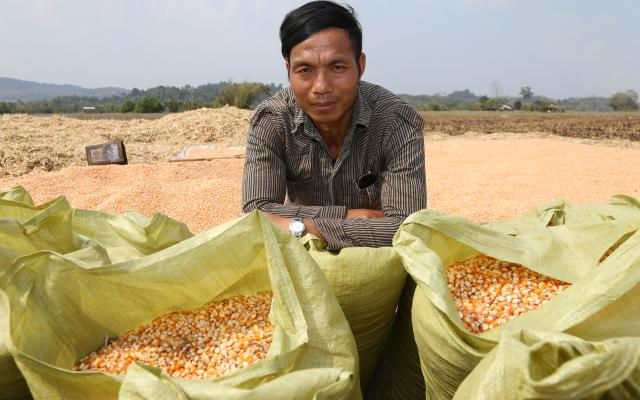Corn Plantation Livelihoods in Kachin, Myanmar