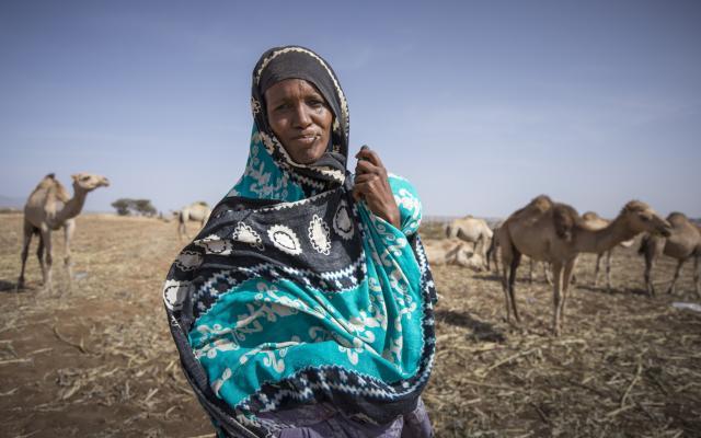Ashra with her camels, Somali region, Ethiopia.