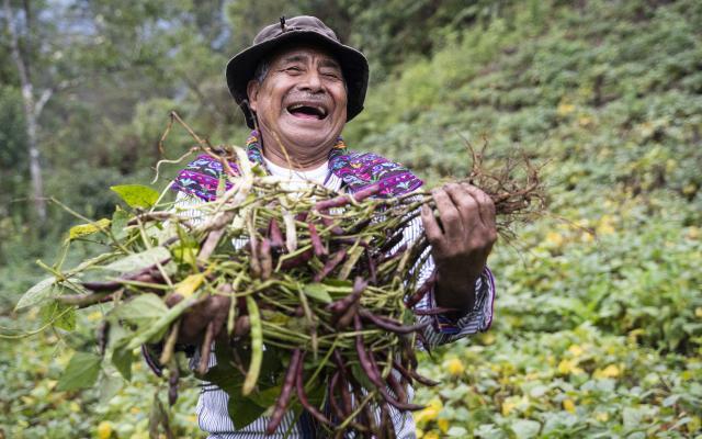 Jesus Ramírez is proud of his harvest of local beans, Todos Santos Cuchumatanes, Guatemala.