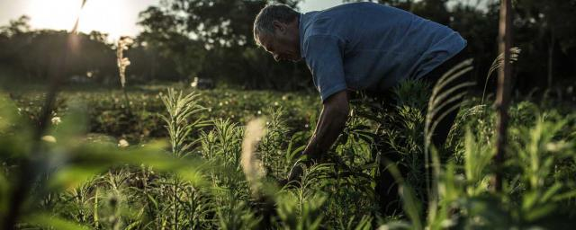 Curuhuati, campaña CRECE. Crédito: Pablo Tosco / Oxfam Intermón