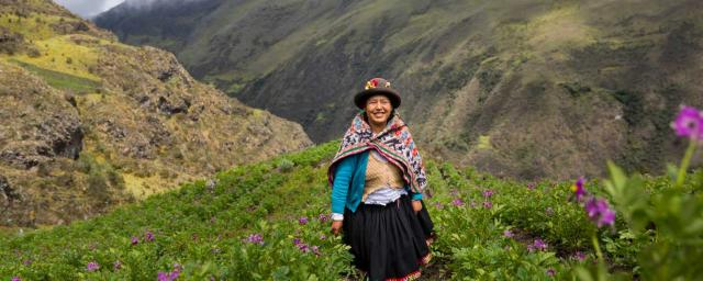 Sonia Quispe Ttito (35 years) is standing in a field of flowering potato plants. Adapting to climate change in the Andes. Credit: Ilvy Njiokiktjien / Oxfam Novib