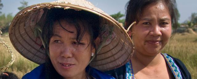 laos2012_gender660x290.jpg