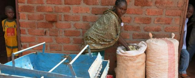 Many families in Central African Republic struggle to obtain the basic essentials such as water and food. In Bria, Oxfam is supporting vulnerable households that have lost their means of production by helping them to relaunch their economic activities.