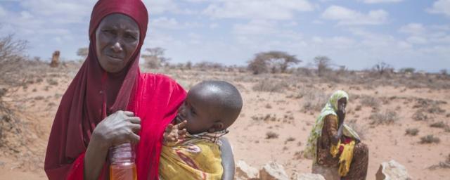 Nimo tient un médicament contre la diarrhée. Elle a perdu la majeure partie de son troupeau et souffre de diarrhée depuis des semaines. « Nous avions 170 bêtes. Mais elles ont commencé à mourir et sont tombées comme des mouches, jour après jour. »