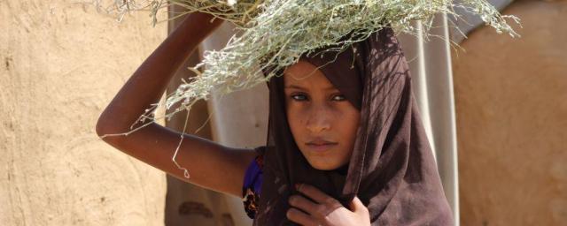 """Aisha *, de 9 años, recoge leña todos los días para que su familia pueda cocinar. Cuando regresa a casa sin leña, la familia tiene que cocinar quemando botellas de plástico, """"El olor a plástico hace que la comida sepa muy mal y no puedo comer"""", dice."""
