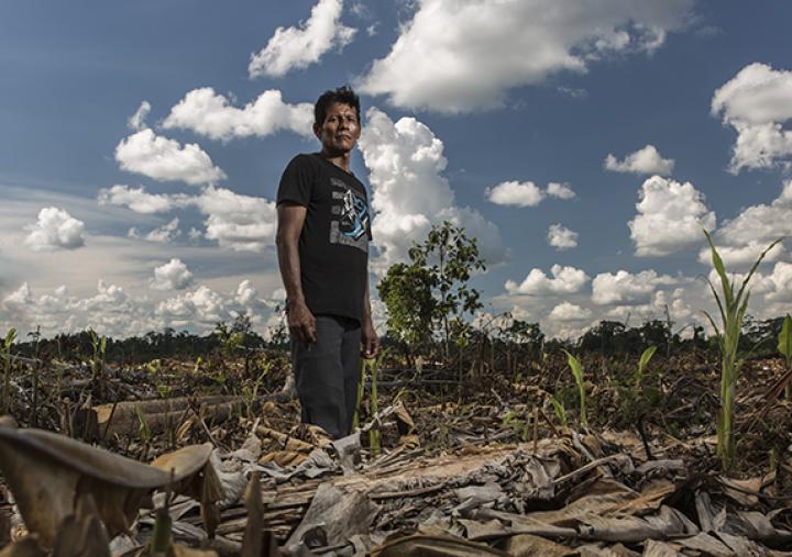 La communauté Shipibo de Santa Clara de Uchunya, en Amazonie péruvienne, fait face à l'invasion de ses terres ancestrales par des plantations de palmiers à huile et des trafiquants. 7 000 hectares de forêt ont été détruits. Photo : Diego Pérez/Oxfam