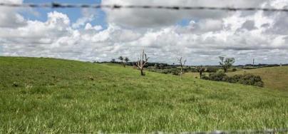 Colombia: Protección a defensoras de derechos agrarios, ambientales y territoriales 660x440