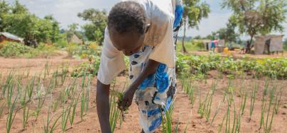 Soruda funding enabled Oxfam's partner Soruda funding enabled Ayoo to get help with the heavy work of establishing their gardens.