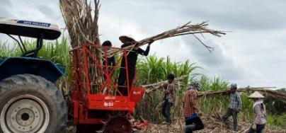 A Mitr Lao tractor being used to harvest sugar cane in Xaiburi, Laos