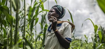 Fati Marmoussa en su campo de sorgo en Tafgo, Burkina Faso. La falta de lluvias y las largas sequías provocan que, durante algunos meses, Fati y sus hijos no tengan alimentos para comer y se vea obligada a vender los pocos animales que tiene.