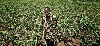 A farmer poses in his field in Burkina Faso
