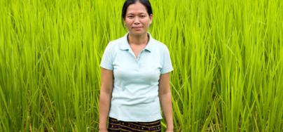 Phatthida Chanmany, 35 by a TDK8 rice field in Namai Village, Feung District, Vientiane Province, Laos. Credit: Tessa Bunney/Oxfam