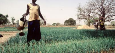 burkina-woman-agriculture-1583-400x267.jpg