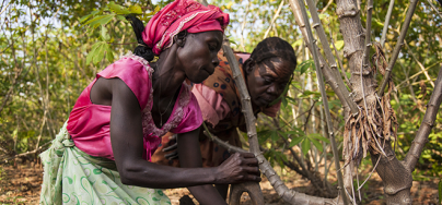 Woman planting in dry earth, South Sudan