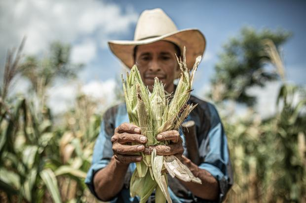 Lucas Aldana lives with his 5 children and his wife in the community of Caparrosa, Guatemala