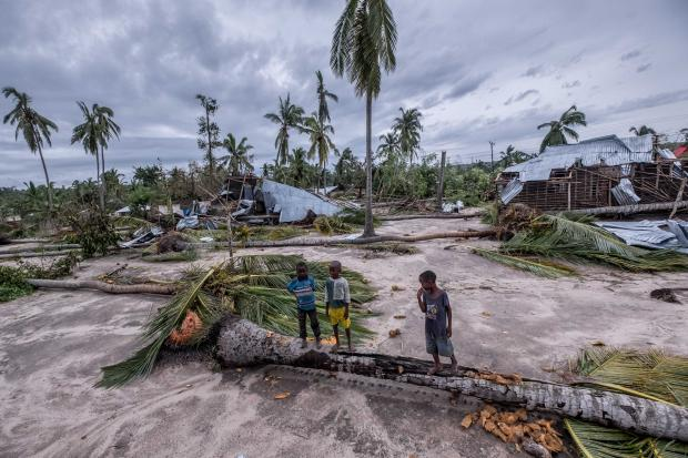 Children walk over a falllen palm tree in the town of Macomia in northern Mozambique, which was hit hard by cyclone Kenneth.